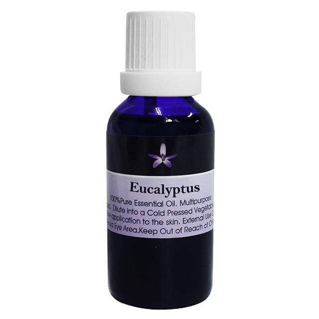BODY TEMPLE 100%澳洲尤加利(Eucalyptus)芳療精油30ml